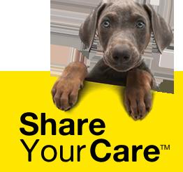fido share your care