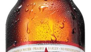 CDN-Bottle09