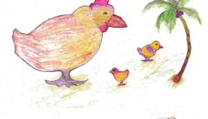 Chicken4_Nov7