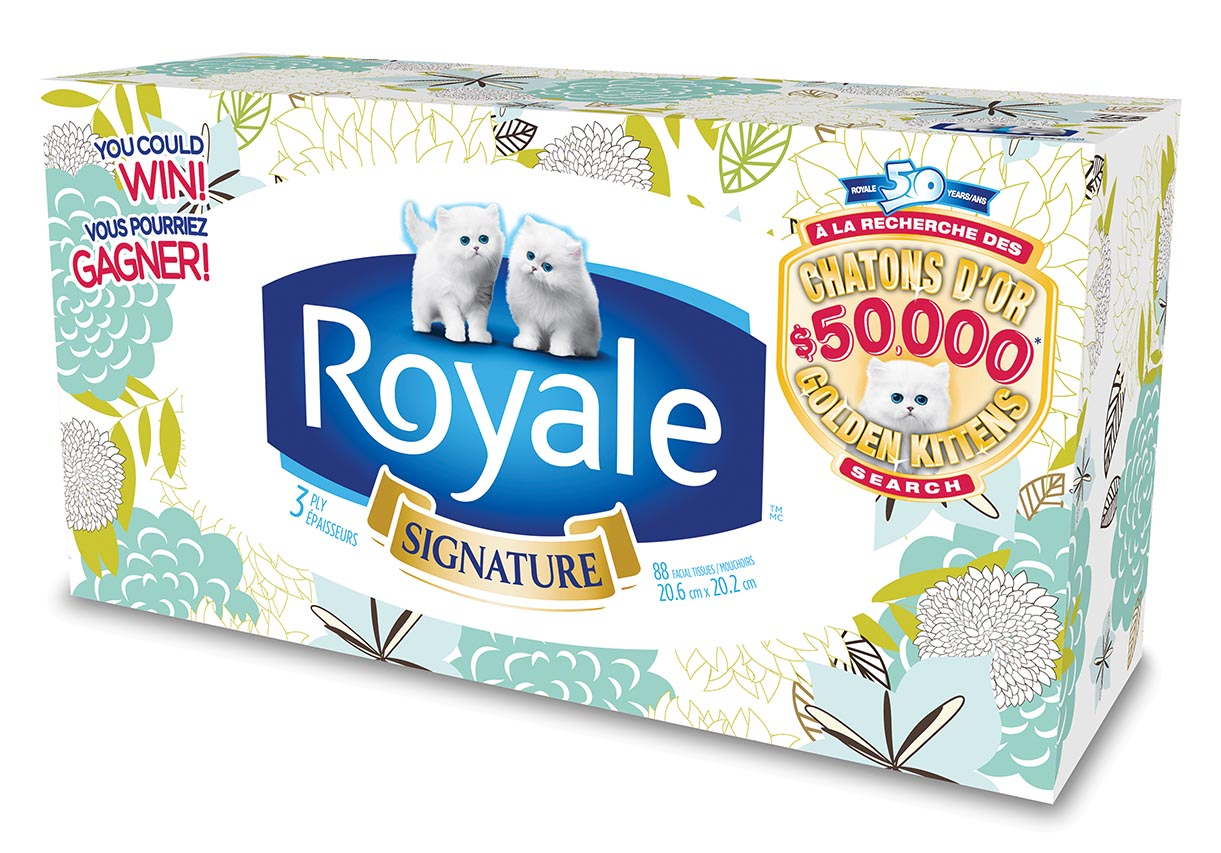 High Res – new kitten packaging facial tissue » strategy