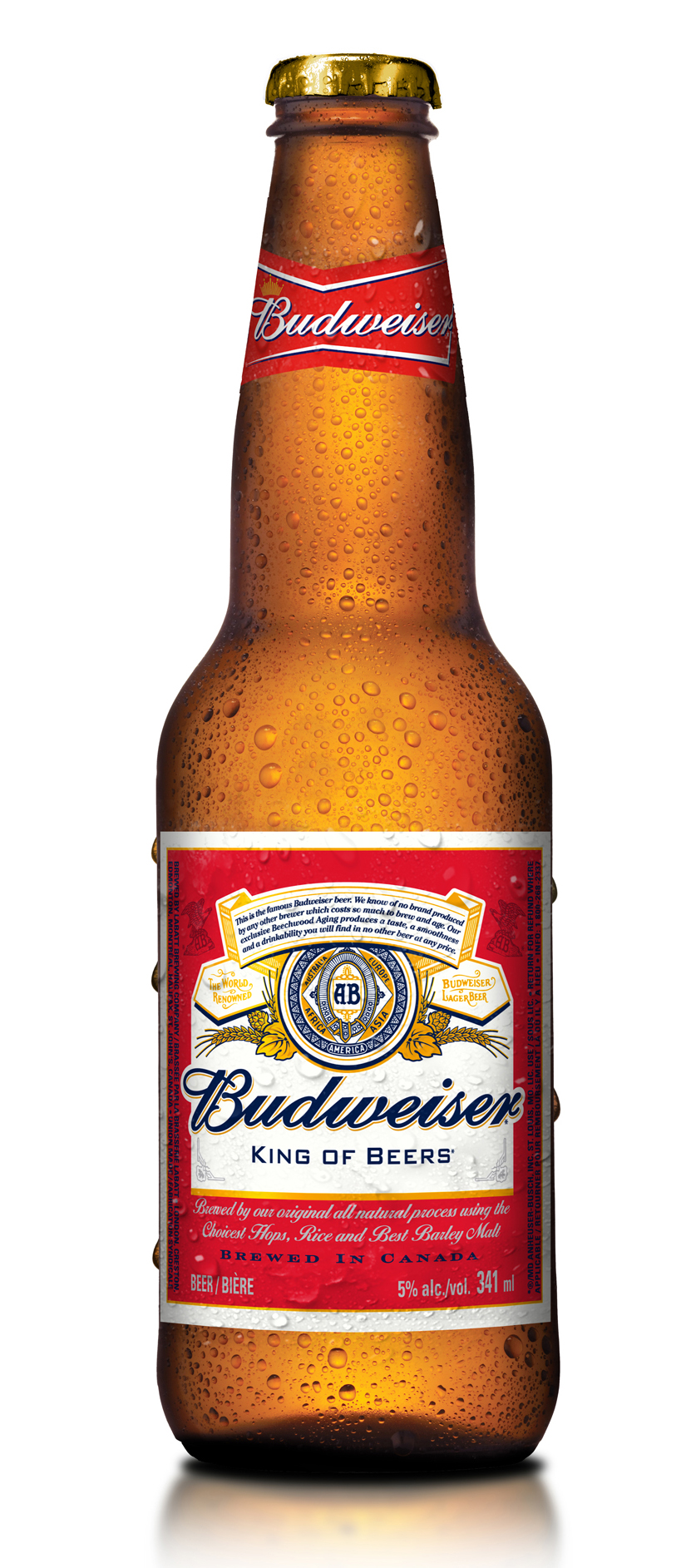 budweiser company report Halfway through 2018, anheuser-busch inbev's global revenues are up 47 percent despite continued shipment and depletion declines in the us a-b, the world's largest beer manufacturer, posted.