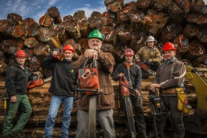 TimberKings2