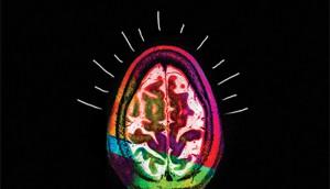 brain.lines2