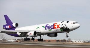 fed ex pandas