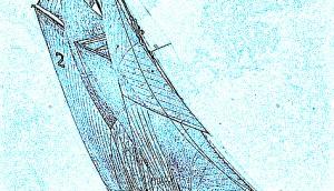 bluenose