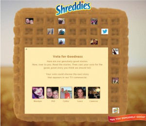 ShreddiesImg2