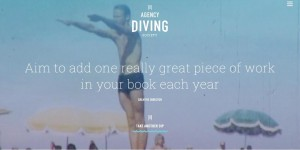agencydiver