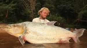 Episodic Image - Big Fish Man