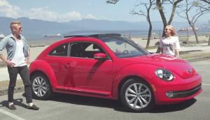 beetleroadstory