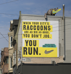 nike_-_raccoon_720-291x300