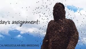 Bees billboard