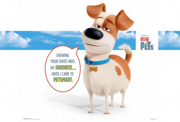 PetSmart Secret Life of Pets.Max In-store