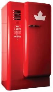 fridgeclip2