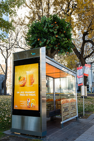 This transit shelter for Lassonde's Oasis juice featured an orange tree, wraparound decal of cartons of oranges and the scent of oranges.