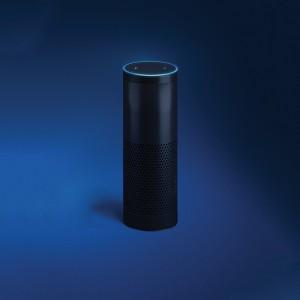Echo and Echo Dot AG