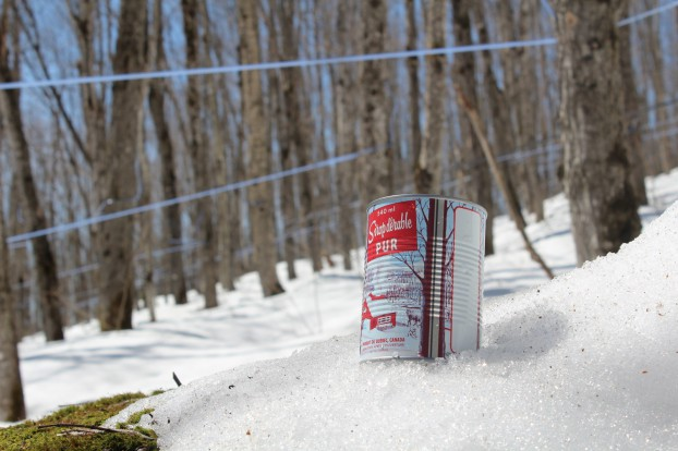 Federation of Quebec Maple Syrup Producers-A Bountiful Harvest f