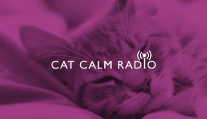 CatCalmRadio_Image_1