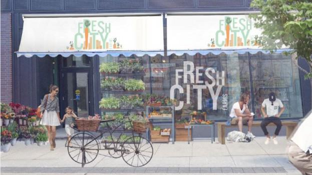 FreshCity