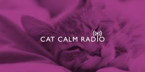 CatCalmRadio_Image_1