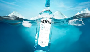 Iceberg_Float