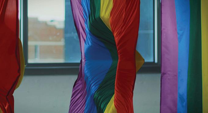 73240_Pride Shield imageClip4