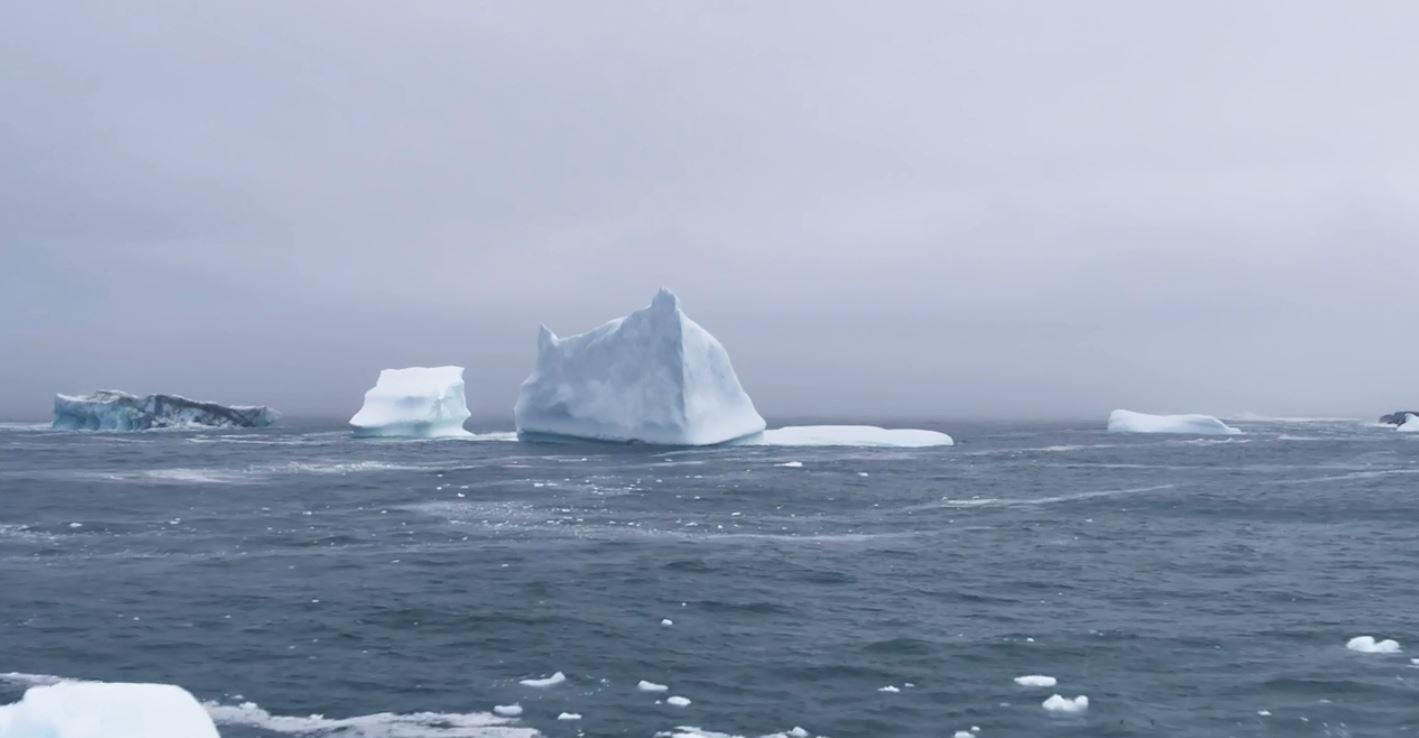 icebergsea
