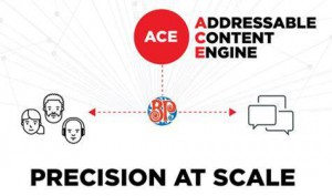 Using UM's proprietary Addressable Content Engine (ACE), Boston Pizza was able to target high-value prospects with data-triggered content and deliver one-to-one messaging at scale. By connecting exactly when prospects were most receptive to purchase, ACE boosted online orders from non-customers by a whopping 44% and significantly reduced cost per acquisition.
