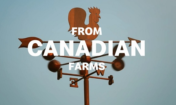 canadian-farms-mcdonald's