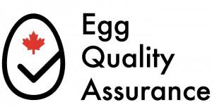 EQA-logo (1)