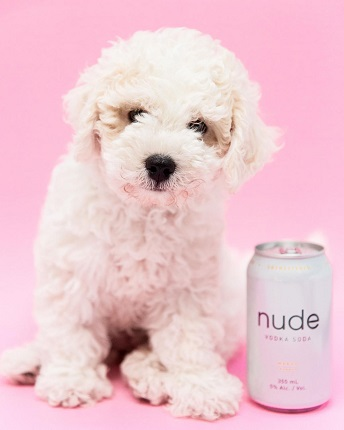 nude-vodka2