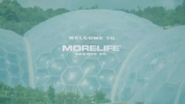 morelife