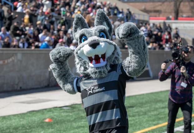 Wolfpack mascot