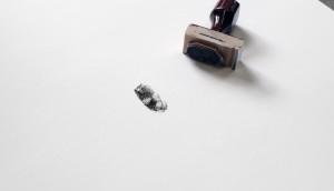 Thumbprint_02
