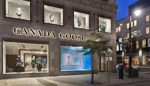 Canada-goose-montreal