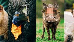 Pixelated-Row-Images