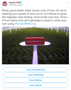 """For Wendy's """"#GrownWithLove"""" campaign, cameras and speakers were installed in a Wendy's greenhouse so that Tweets tagged #GrownWithLove could be read to the lettuce twice a day. It was an innovative way of addressing sustainability that harnessed the power of social media."""