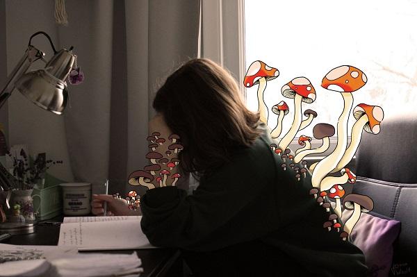 Quarantine Mushroom - Jessica